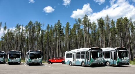 A Red Bus passes a group of modern buses used by Glacier National Park to move hikers and vistors throughout the park, as well as reduce traffic on the Going-to-the-Sun Road. During the off-season, the buses are used by Eagle Transit in the Flathead Valley. Justin Franz | Flathead Beacon.