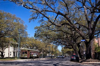 St. Charles Streetcar Line, New Orleans